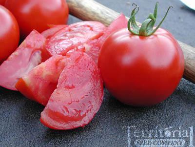 Bonita Ojo Tomato Organic