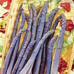 Asparagus Sweet Purple