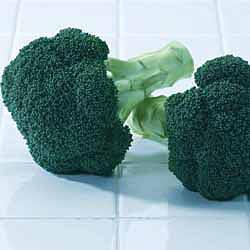 Green Magic Hybrid Broccoli