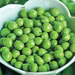 Now Or Later Peas