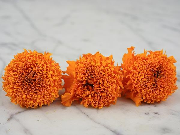 Cupid Orange Marigold