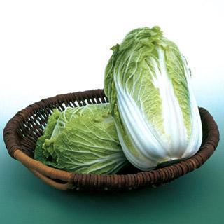 Chinese Cabbage Kaboko Hybrid Organic