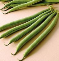 E-Z Pick (OG) Bush Bean