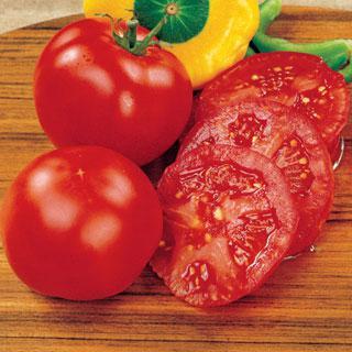 Tomato Early Girl Hybrid