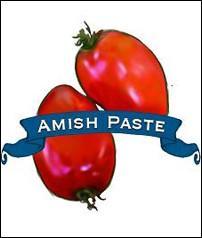 Organic Amish Paste Tomato, Pkt