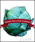 Organic Danish Ballhead Cabbage Seed