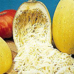 Vegetable Spaghetti Winter Squash