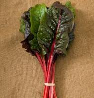 Ruby Red or Rhubarb Chard (OG)