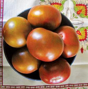 Tomato, Brazilian Beauty
