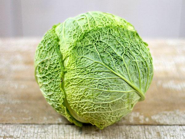 Perfection Drumhead Savoy Cabbage