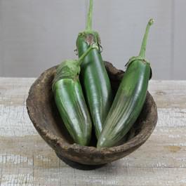 Bangladeshi Long Eggplant