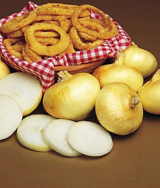 Onion, Granex Yellow