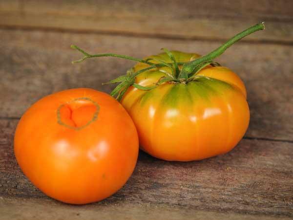 Old German Tomato Organic Reviews Seedratings Com