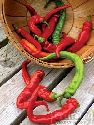 Jimmy Nardello's Pepper