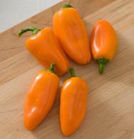 Lunchbox Orange (OG)