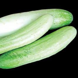 Thai Mae Sai Cucumber