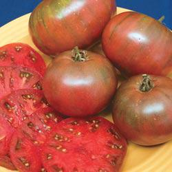 Cherokee Purple Heirloom Tomato