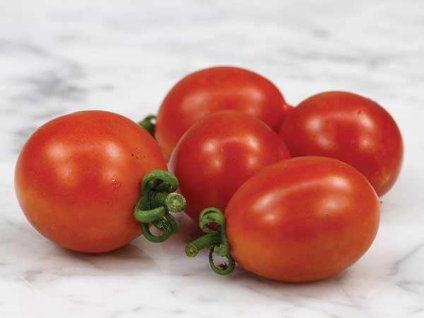 A Grappoli D'Inverno Tomato