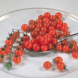 Tomato Spoon