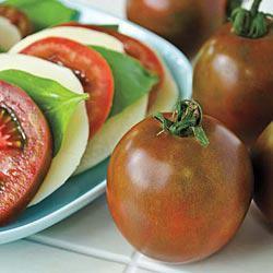 Black Velvet (VFF) Hybrid Tomato