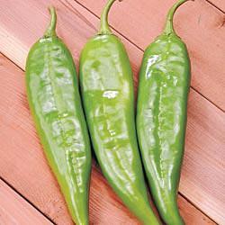 Biggie Chile Hybrid Hot Pepper