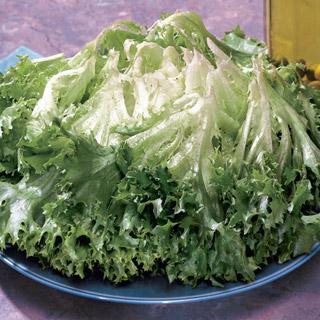 Lettuce Multigreen 3