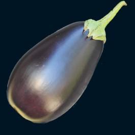 Florida Market Eggplant