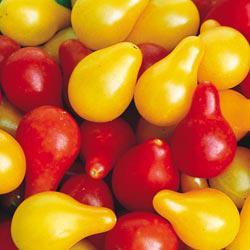 Pear Heirloom Tomato