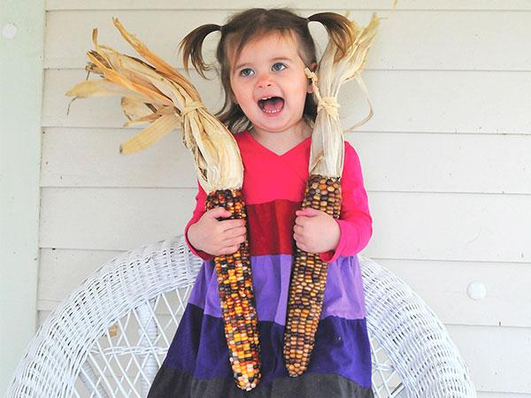 Wade's Giant Indian Flint Corn
