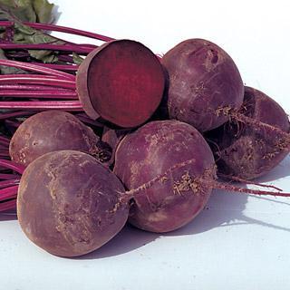 Beet Boro Hybrid Organic
