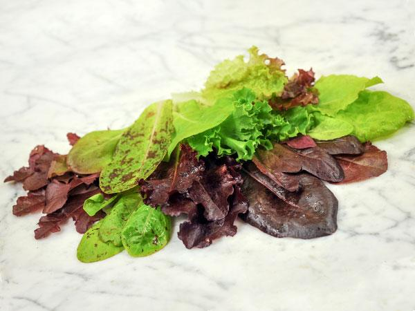 Rocky Top Lettuce Mix