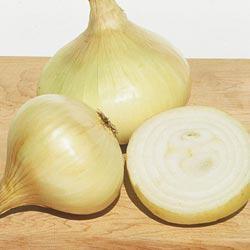 Yellow Granex Hybrid Onion