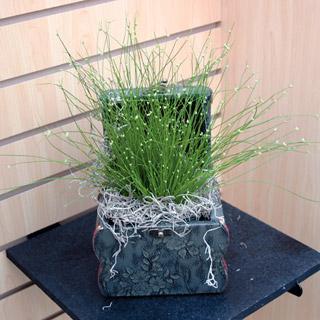 Fiber Optic Grass Live Wire