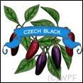 Organic Czech Black Pepper Seed