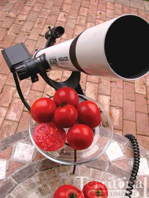 Rutger's CS Space Select Tomato Organic