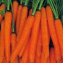 Carrot, Mini-sweet