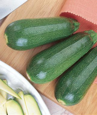 Squash, Summer, Sweet Zuke Zucchini Hybrid