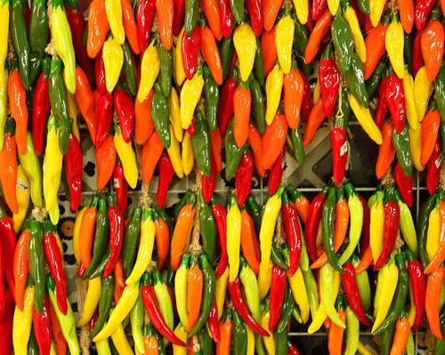 Pepper, Hot Mix