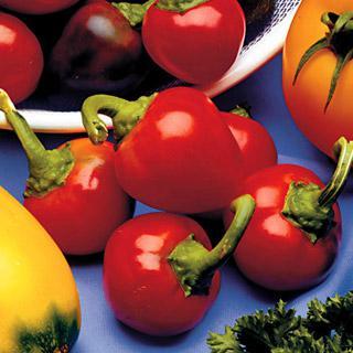 Pepper Cherry Pick Hybrid