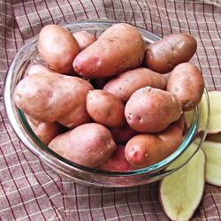 Potato French Fingerling
