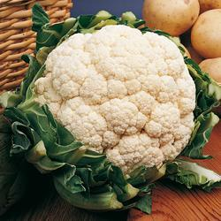 Cauliflower Snow Crown F1 Hybrid
