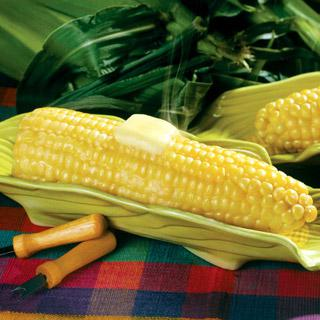 Corn Legend Hybrid