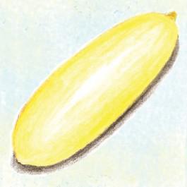 Uzbekski Cucumber