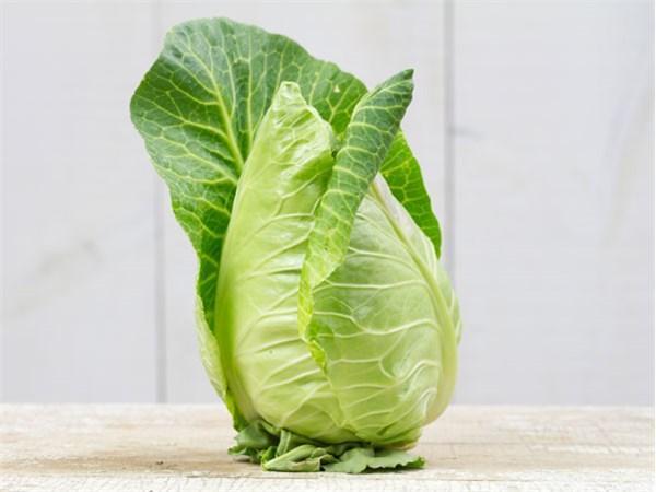 Cour Di Bue Cabbage