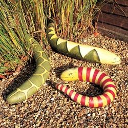 Gourds 'Snakes'