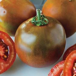 Black Velvet Hybrid Tomato