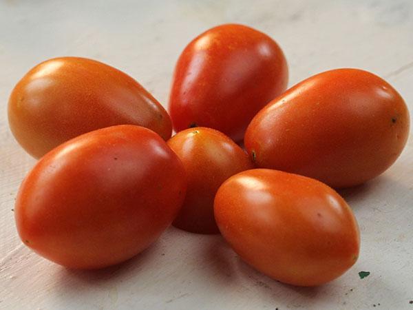 Jujube Cherry Tomato