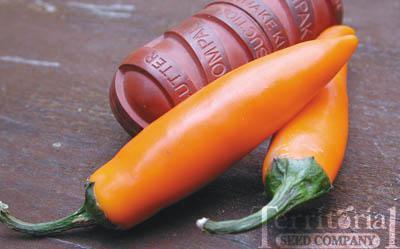 Bulgarian Carrot Pepper