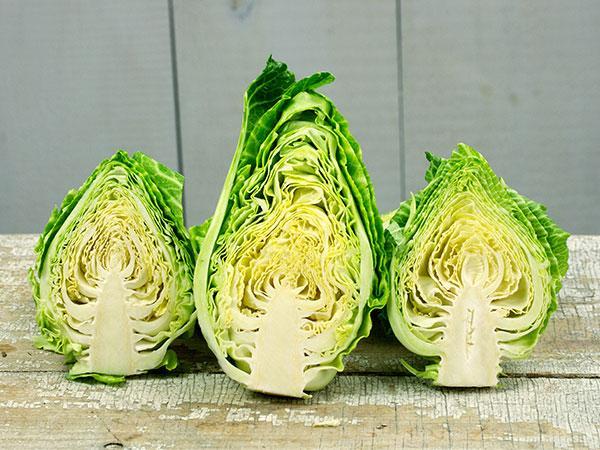 Couer De Boeuf Des Vertus Cabbage