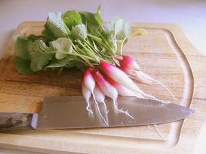 Radish, French Breakfast,Organic